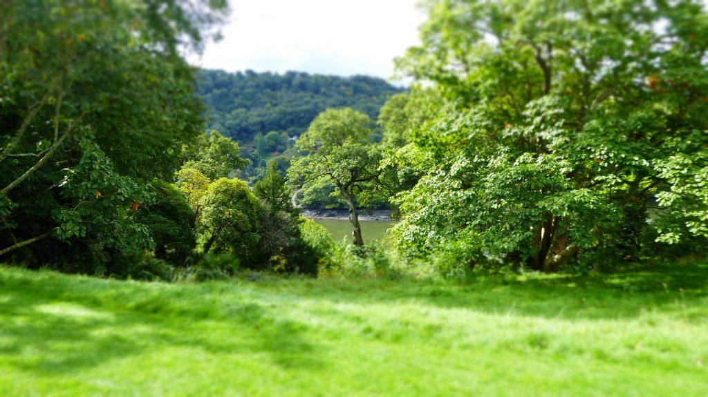 Agatha Christie's garden view