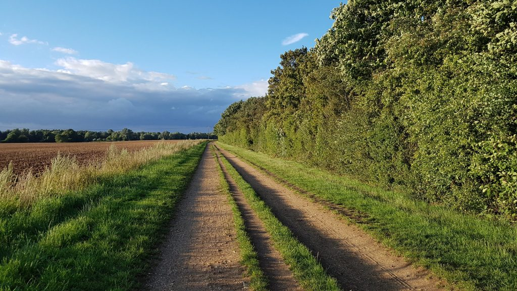 Well trodden rural path